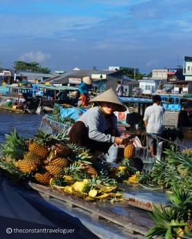 mekong delta 03
